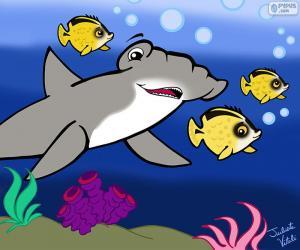 Puzzle de Tiburón martillo, Julieta Vitali