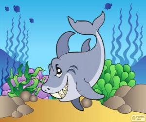 Puzzle de Tiburón