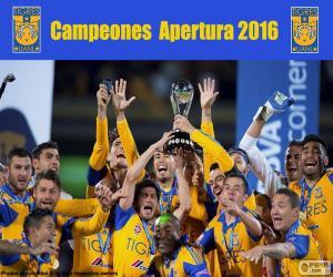 Puzzle de Tigres UANL, Apertura 2016