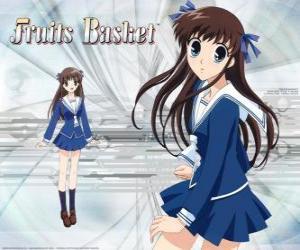 Puzzle de Tohru Honda es una estudiante de secundaria y personaje principal de Fruits Basket