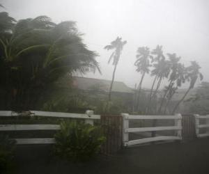 Puzzle de Tormenta tropical