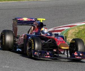 Puzzle de Toro Rosso STR6 - 2011 -