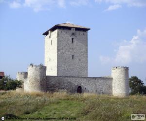 Puzzle de Torre de Mendoza, España