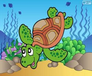 Puzzle de Tortuga marina