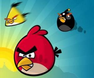 Puzzle de Tres de los pájaros de Angry Birds
