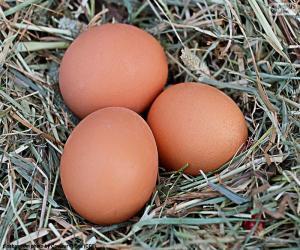 Puzzle de Tres huevos
