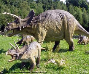 Puzzle de Triceratops