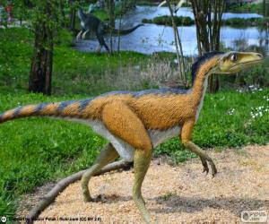 Puzzle de Troodon