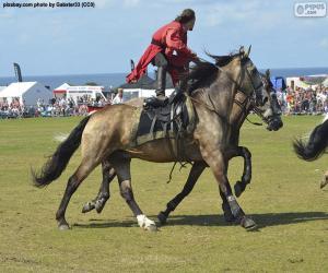 Puzzle de Trucos de equitación