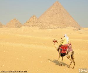 Puzzle de Un camello frente las pirámides, monumentos funerarios del Antiguo Egipto