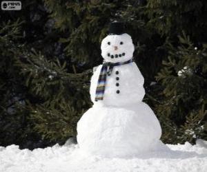 Puzzle de Un elegante muñeco de nieve