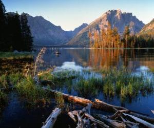 Puzzle de Un lago con troncos flotando en primer plano y altas motañas