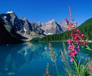 Puzzle de Un lago con vegetación y altas motañas