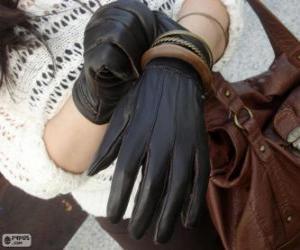 Puzzle de Un par de elegantes guantes