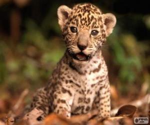 Puzzle de Un pequeño jaguar