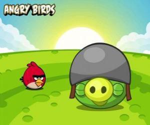 Puzzle de Un pequeño pájaro rojo al lado de un cerdo con casco