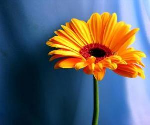 Puzzle de Una simple flor que bonito regalo para tu madre