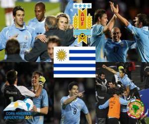 Puzzle de URU finalista, Copa América 2011