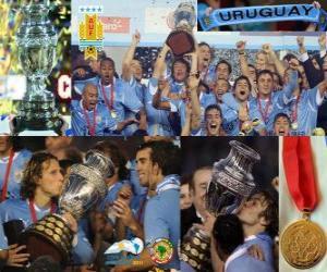 Puzzle de Uruguay, Campeón Copa América 2011