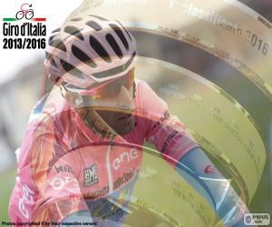 Puzzle de V. Nibali, Giro Italia 16