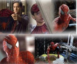 Puzzle de Varias imagenes de Spiderman