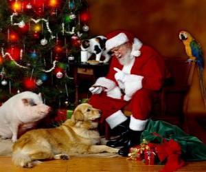 Puzzle de Varios animales con Papá Noel