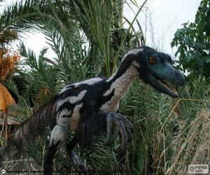 Puzzle de Velociraptor