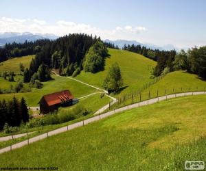 Puzzle de Verdes prados de montaña