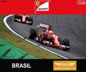 Puzzle de Vettel, G.P de Brasil 2015
