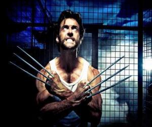 Puzzle de Wolverine, Glotón o Lobezno es un auperhéroe mutante y uno de los X-Men y de los Nuevos Vengadores