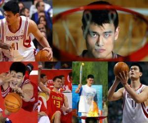 Puzzle de Yao Ming se retira del baloncesto profesional (2011)
