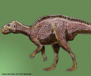 Puzzle de Zalmoxes vivió hace aproximadamente 65 millones de años