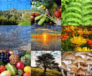Puzzles de Naturaleza