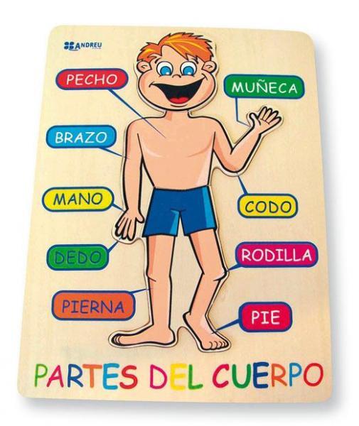 Resultado de imagen de PUZZLES PARTES EL CUERPO