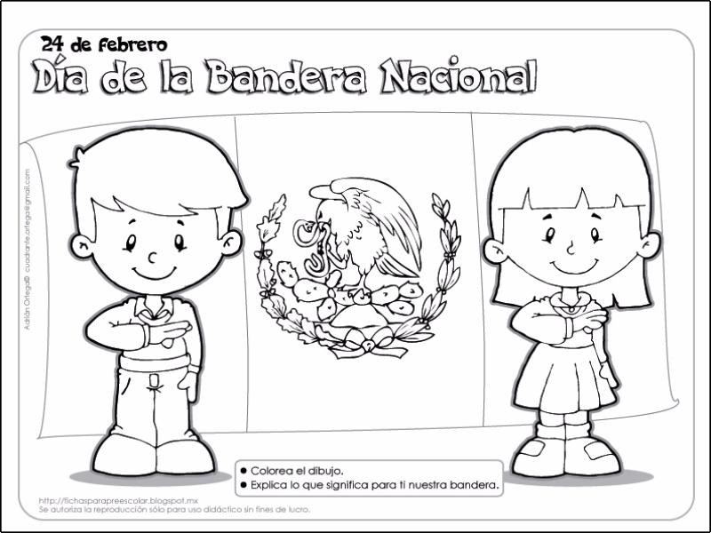 Puzzle De Rompecabezas Bandera De México Rompecabezas De
