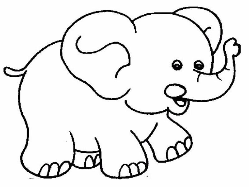 Dibujos de Elefantes para Colorear - Dibujos.net