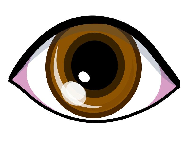 Puzzle de Sentido de la vista , rompecabezas de